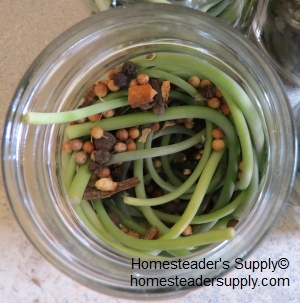 Garlic scapes and pickling spices
