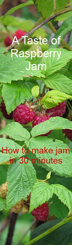 How to Make Raspberry Jam in 30 Minutes