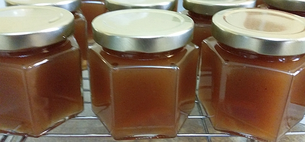 apple cider jelly recipe
