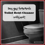 Does Your Homemade Toilet Bowl Cleaner Really Work?