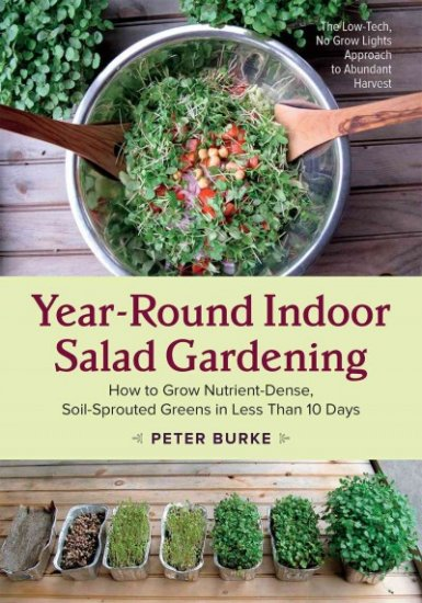 indoor salad gardening book