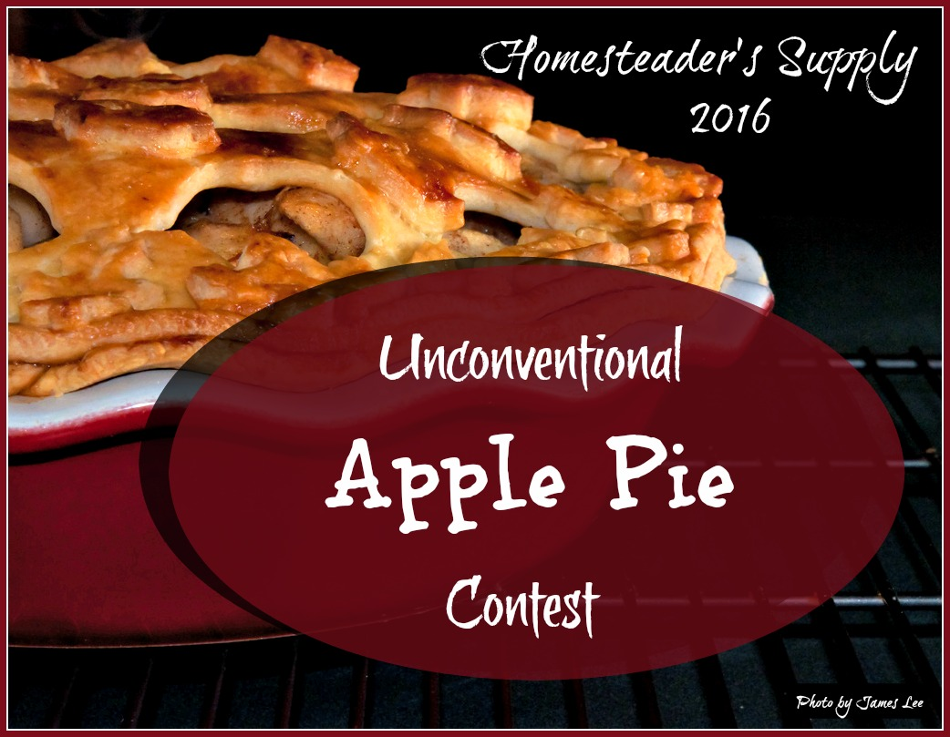 apple pie contest cover