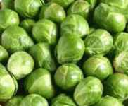 Brussels Sprouts Long Island Heirloom