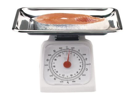 Stainless Steel 22lb Kitchen Scale