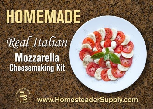 Italian Mozzarella Cheesemaking Kit