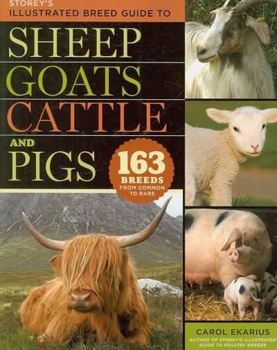 Storeys Illustrated Guide to Sheep, Goats, Cattle and Pigs