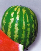 Watermelon, Crimson Sweet Heirloom