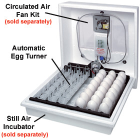 Incubator - Still Air Accessories - Automatic Egg Turner