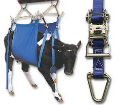 Daisy Cow Lifter-Heavy Duty - Blue