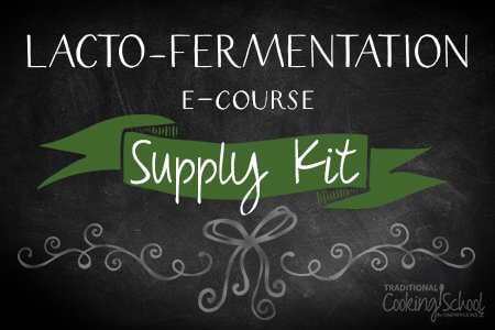 Lacto-Fermentation eCourse - Kit without Grolsch Bottles