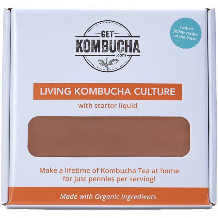 Kombucha Culture (SCOBY) with Free Starter Liquid